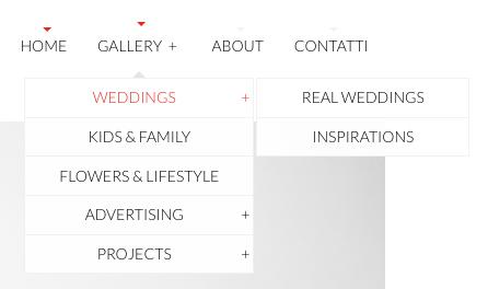 Immagine del menù di navigazione del sito